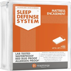 best bed bug mattress protectors